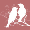 Two birds on a branch - PhotoDune Item for Sale