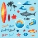 Set Of Surfing Design Elements And Objects - GraphicRiver Item for Sale
