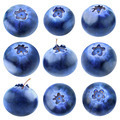 Collection of blueberries - PhotoDune Item for Sale