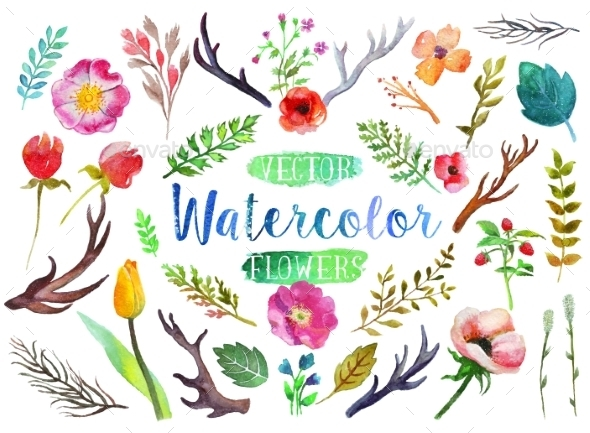 GraphicRiver Vector Watercolor Aquarelle Flowers And Leaves 11562812