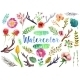 Vector Watercolor Aquarelle Flowers And Leaves. - GraphicRiver Item for Sale