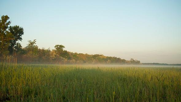 Morning Landscape At The Sunrise
