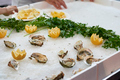 delicious oysters at market - PhotoDune Item for Sale