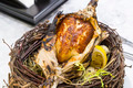 baked chicken in the paper in a plate in the form of nests - PhotoDune Item for Sale