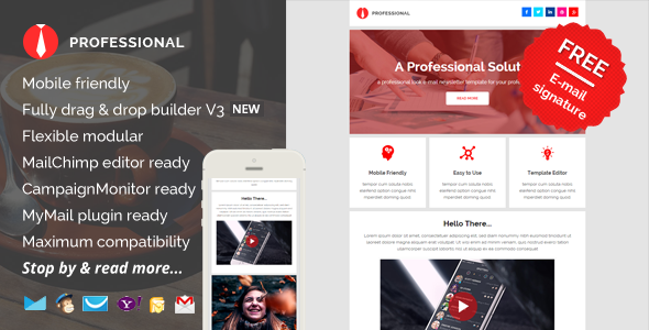 ThemeForest Professional E-mail Newsletter Pack 11569652