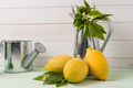 Limes and vintage metal retro watering cans - PhotoDune Item for Sale