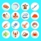 Sea Food Icons Flat - GraphicRiver Item for Sale