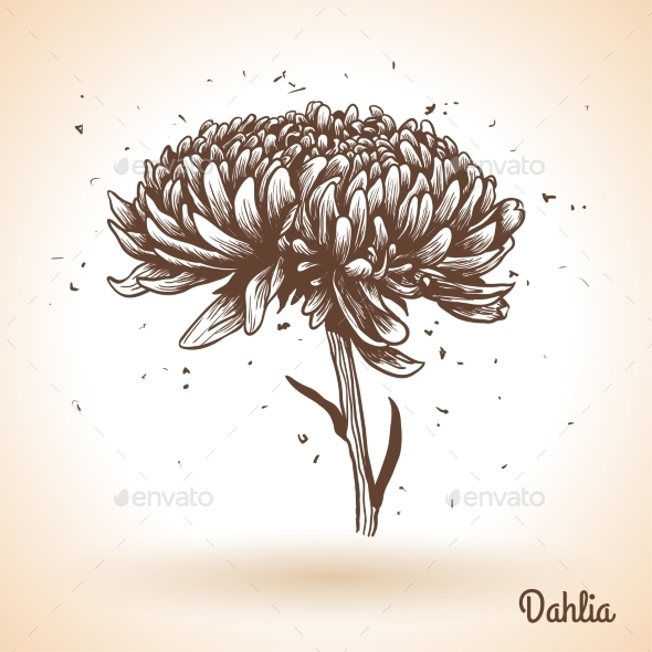 GraphicRiver Flower 11583093
