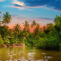 river, beautiful sunrise and tropical palms - PhotoDune Item for Sale
