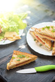 Cheese sandwich - PhotoDune Item for Sale