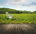 Empty wooden table top in open fields of dandelions - PhotoDune Item for Sale