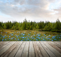 Wooden deck with forest trees and flowers - PhotoDune Item for Sale
