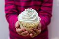 Muffins - PhotoDune Item for Sale