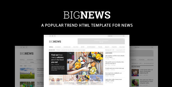 ThemeForest Bignews News & Magazine Template 10958306
