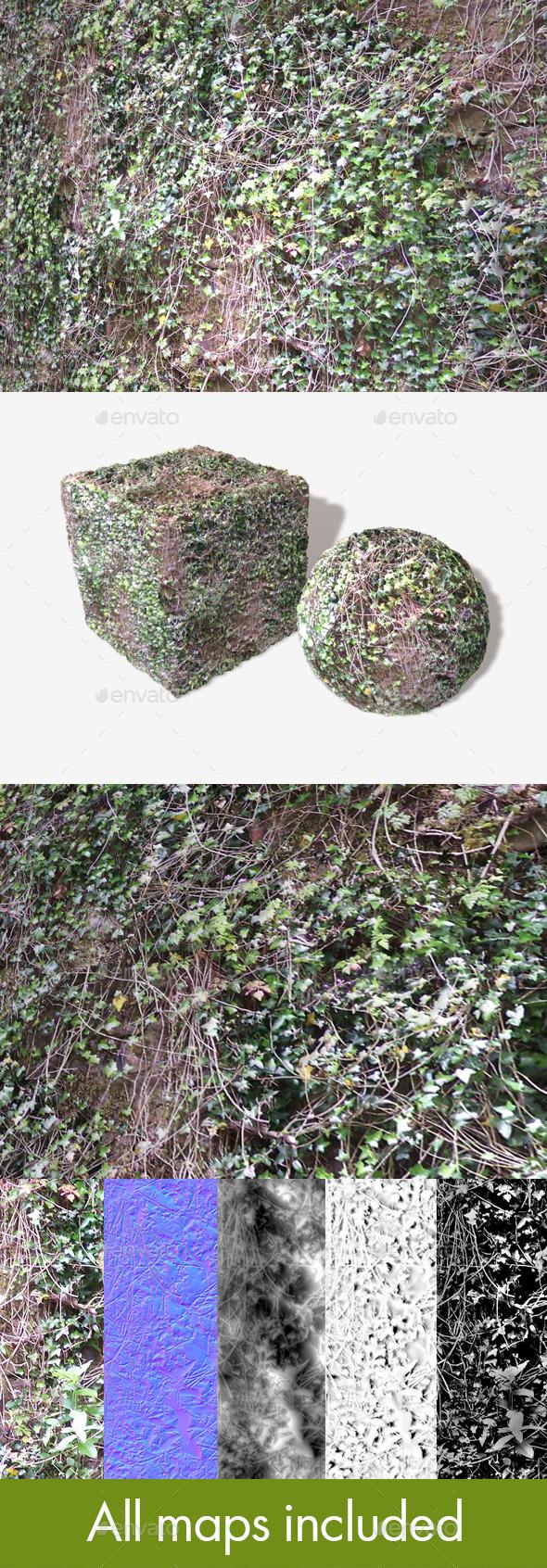 3DOcean Overgrown Ivy Vines Seamless Texture 11603563