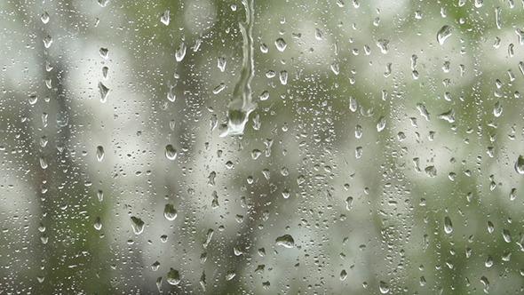 Rain Drops Falling on the Window