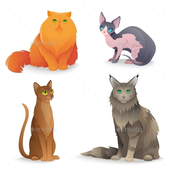 GraphicRiver Cat Breeds Set 11612826