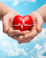 close up of hands holding heart with cardiogram - PhotoDune Item for Sale