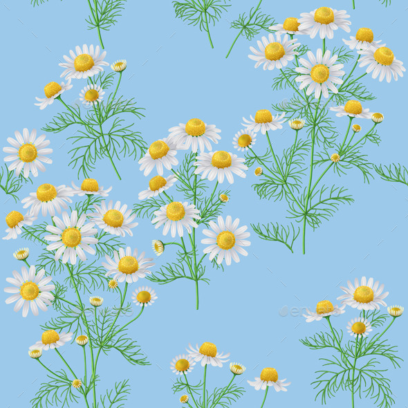 GraphicRiver Wild Chamomile Pattern on Blue 11620396