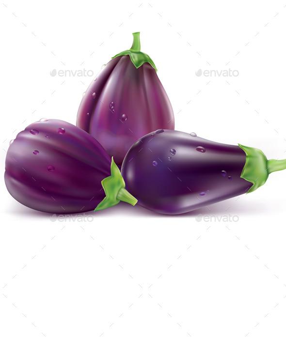 GraphicRiver Eggplant Aubergine 11627801