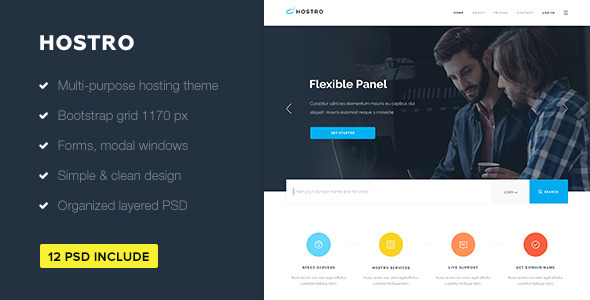 ThemeForest Hostro Hosting PSD Theme 11469121