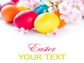Colorful Easter eggs with spring blossom flowers over white - PhotoDune Item for Sale