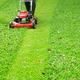 Green grass is mowed lawn mower - PhotoDune Item for Sale