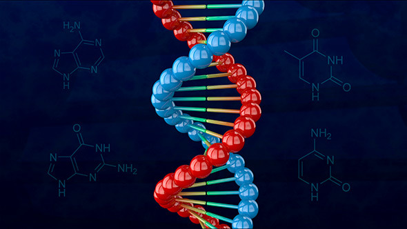 VideoHive DNA Double Helix 11652204