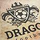 Dragon Football Logo