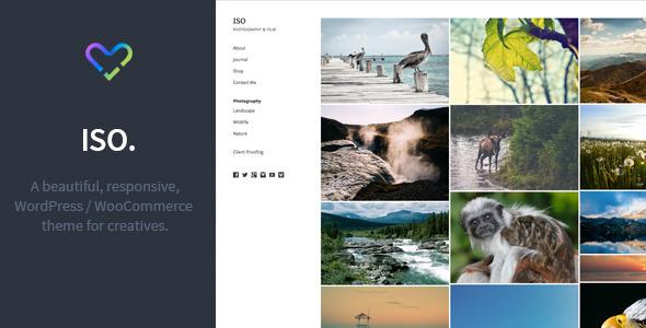ThemeForest ISO Responsive WordPress Woocommerce Theme 11657125