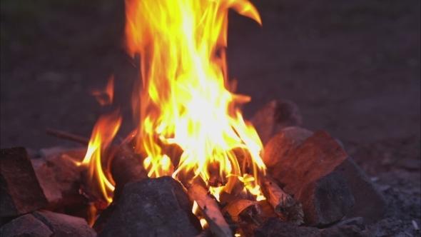 VideoHive Bonfire Campfire 11660575