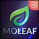 Mo Leaf - GraphicRiver Item for Sale