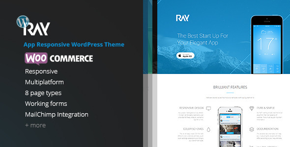 Download Ray - App Responsive WordPress Theme nulled download