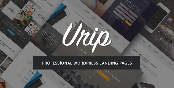 ThemeForest Urip Professional WordPress Landing Page 11690533
