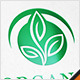 Organic Leaf Logo - GraphicRiver Item for Sale