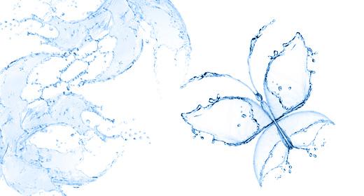 Splash Pictures