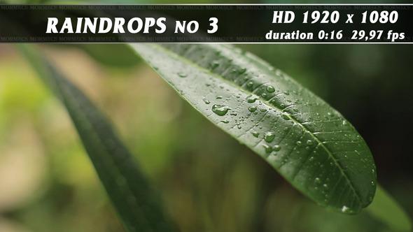 VideoHive Raindrops No.3 11704768