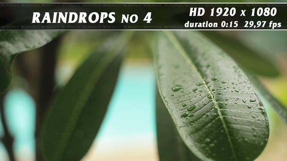 VideoHive Raindrops No.4 11704770