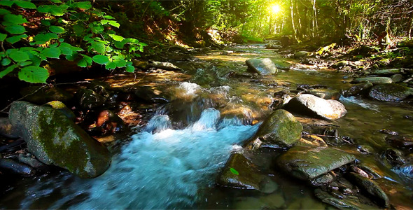 Mountain Stream 13