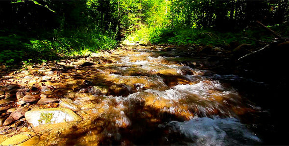 Mountain Stream 15