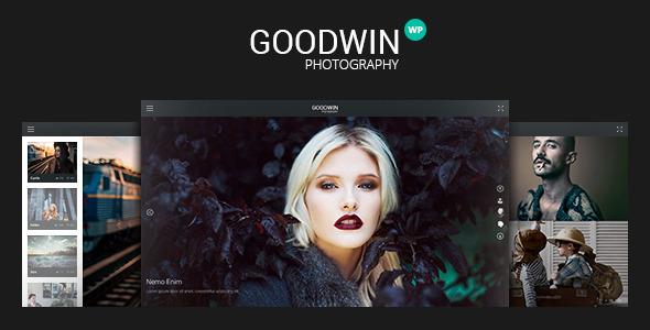 ThemeForest Photography & Video GoodWin WordPress Theme 11709544