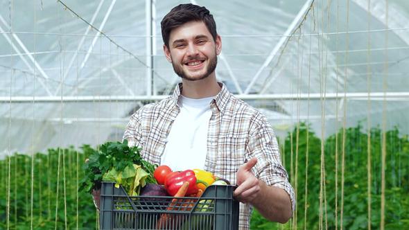 Drawer Full Of Healthy Vegetables