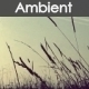 Ambient World - AudioJungle Item for Sale