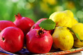 pomegranates and quince fruits