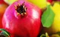 pomegranate closeup