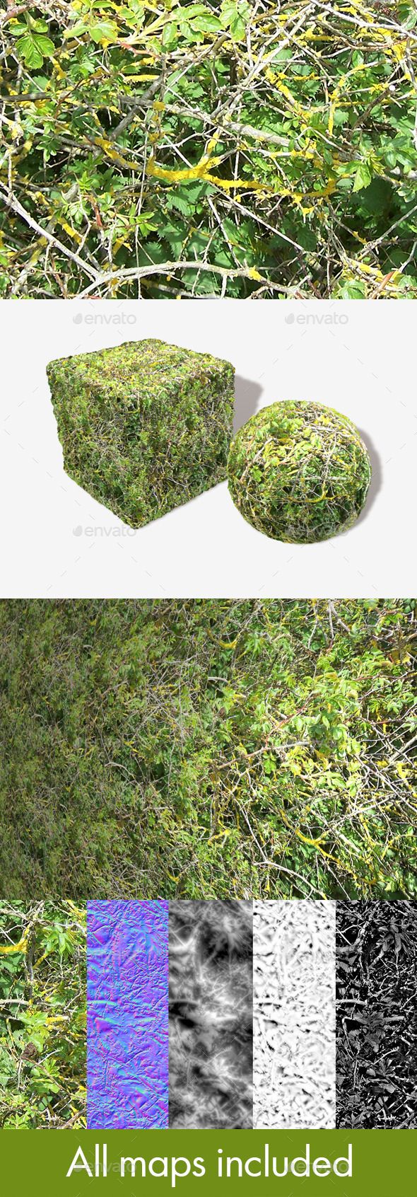 Bush Branches Seamless Texture