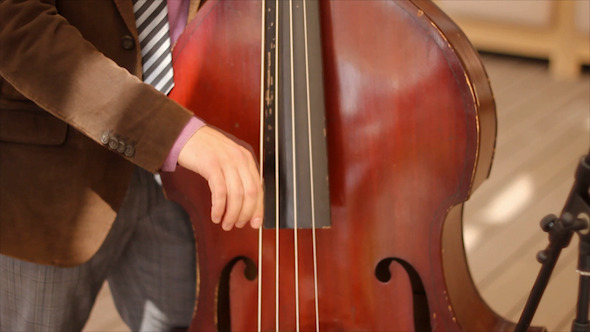 ontrabass Player at Theatre