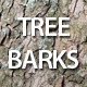 Tree barks texture - GraphicRiver Item for Sale