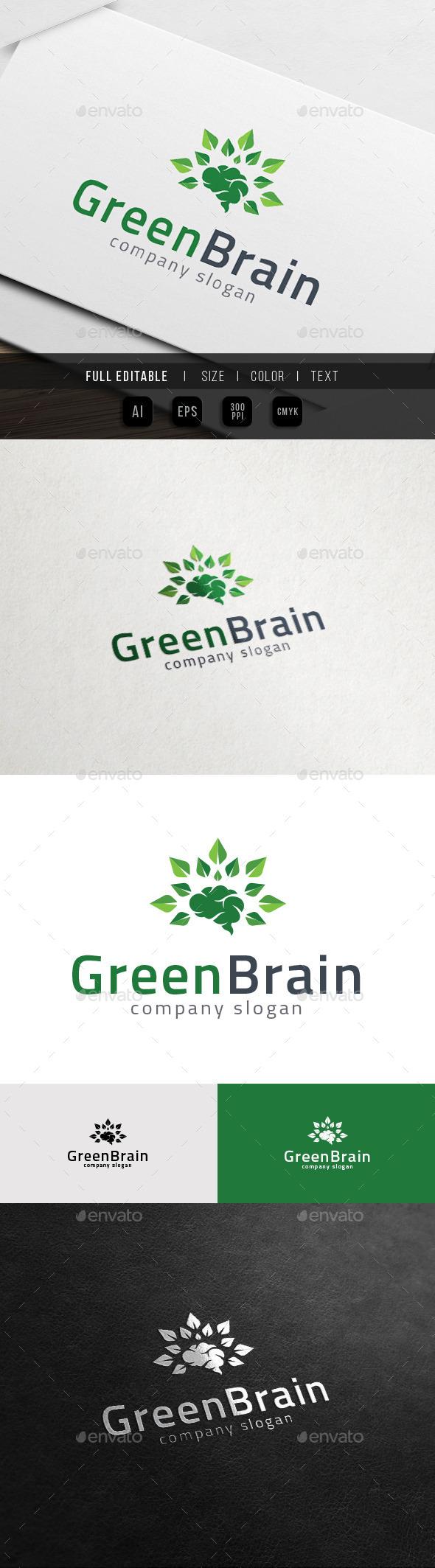 GraphicRiver Big Thinker Green Brain Nature Knowledge Logo 11764803