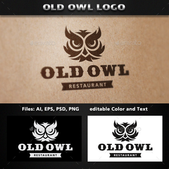GraphicRiver Owl Logo Template 11736573